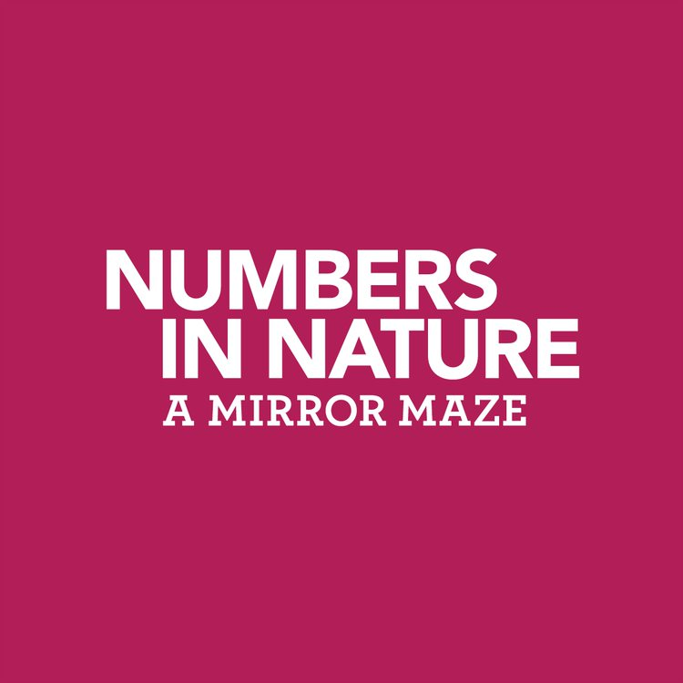 Numbers In Nature: A Mirror Maze Logo